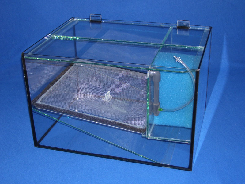 Schr ger boden aquarienbastelei for Boden aquarium